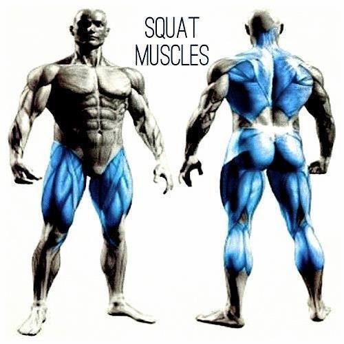 Erection Strength Training