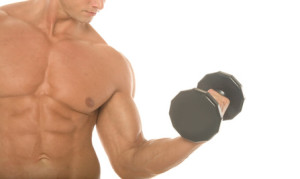 lose fat and grow muscles